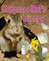Kangaroo Rat's Burrow
