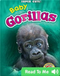 Super Cute! Baby Gorillas