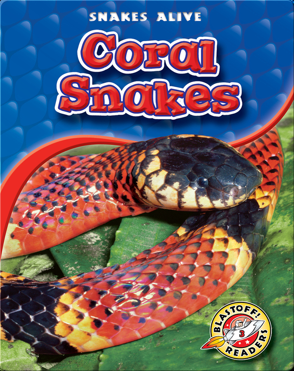 Coral Snakes