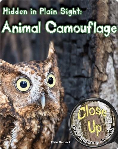 Hidden in Plain Sight: Animal Camouflage