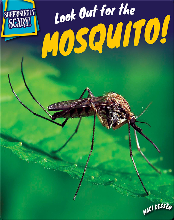 Look Out for the Mosquito!