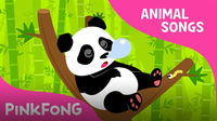 Ni Hao Panda (Animal Songs)