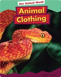 Animal Clothing