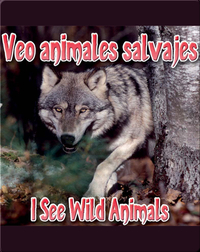 Veo Animales Salvajes  (I See Wild Animals)