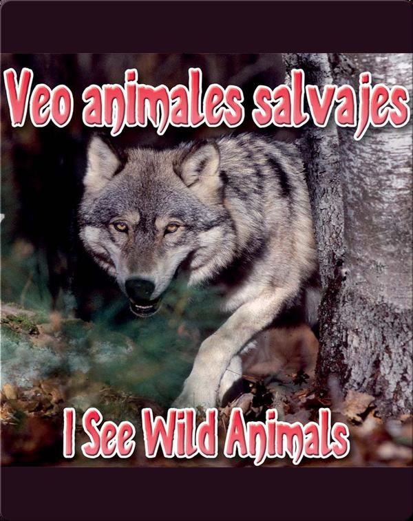 Veo Animales Salvajes  (I See Wild Animals)