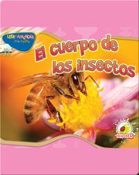 El Cuerpo De Los Insectos (Insect's Body)