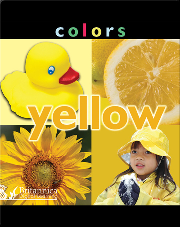 Colors: Yellow