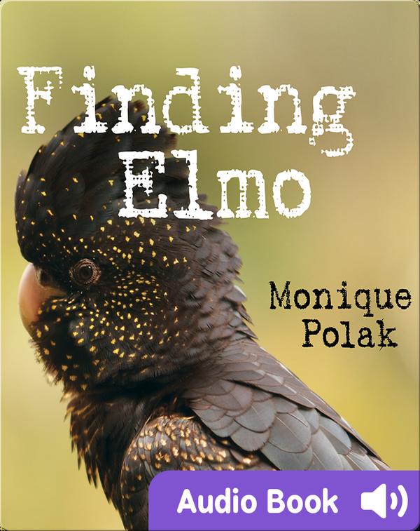 Finding Elmo