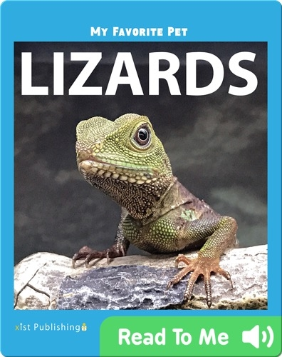 My Favorite Pet: Lizards