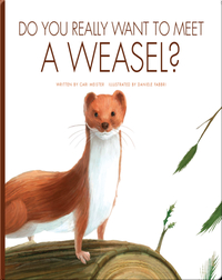 Do You Really Want To Meet A Weasel