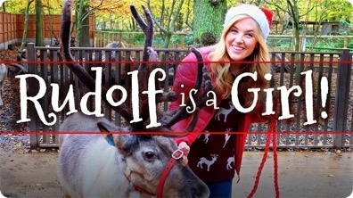 Rudolf is a Girl?! and other Reindeer Facts!