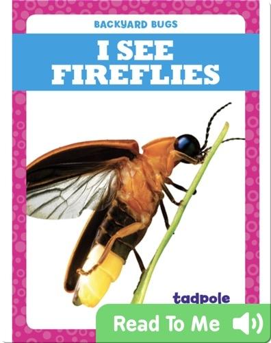 I See Fireflies