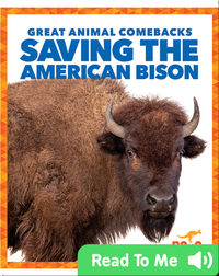 Saving the American Bison