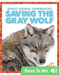 Saving the Gray Wolf