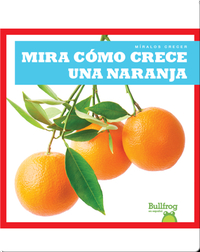 Mira cómo crece una naranja (Watch an Orange Grow)