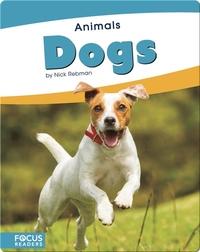 Animals: Dogs