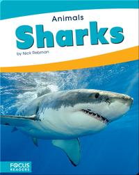 Animals: Sharks