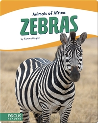 Animals of Africa: Zebras