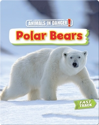 Animals in Danger: Polar Bears