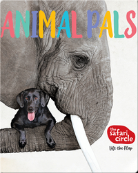 Safari Circle: Animal Pals