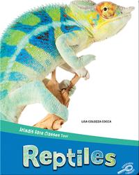 Animals Have Classes Too!: Reptiles