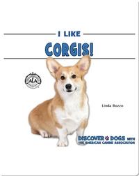 I Like Corgis!