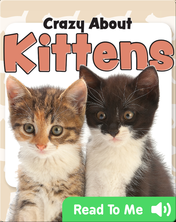 Crazy About Kittens