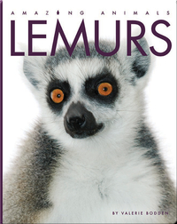 Amazing Animals: Lemurs