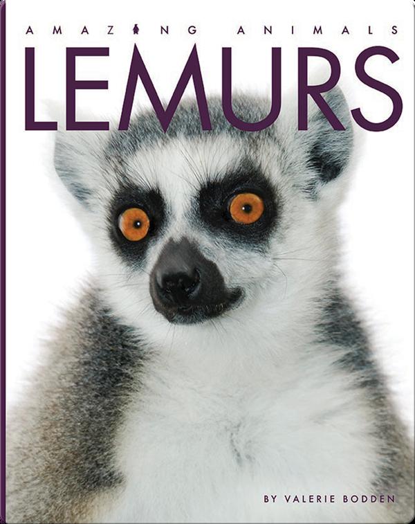 Amazing Animals: Lemurs