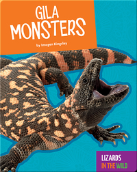 Lizards in the Wild: Gila Monsters