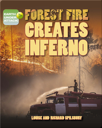 Forest Fire Creates Inferno