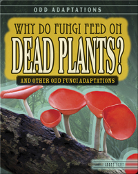 Why Do Fungi Feed on Dead Plants? And Other Odd Fungi Adaptations