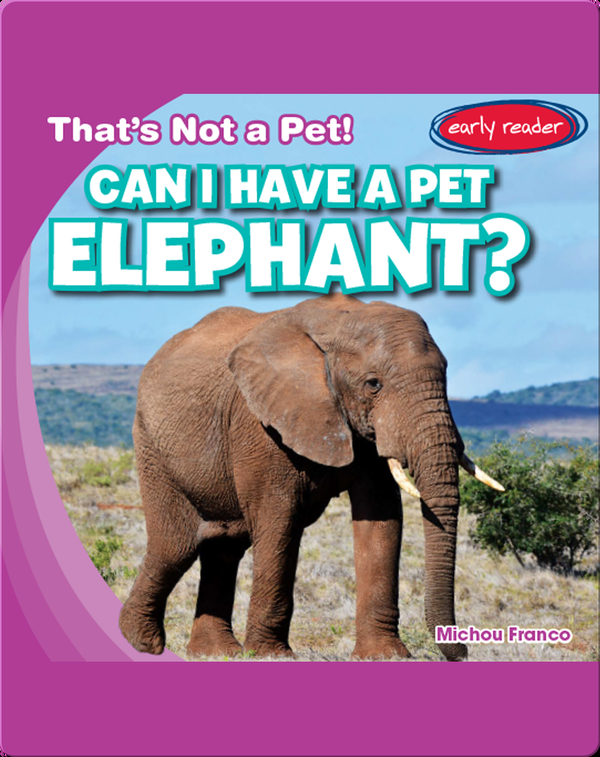 Can I Have a Pet Elephant?