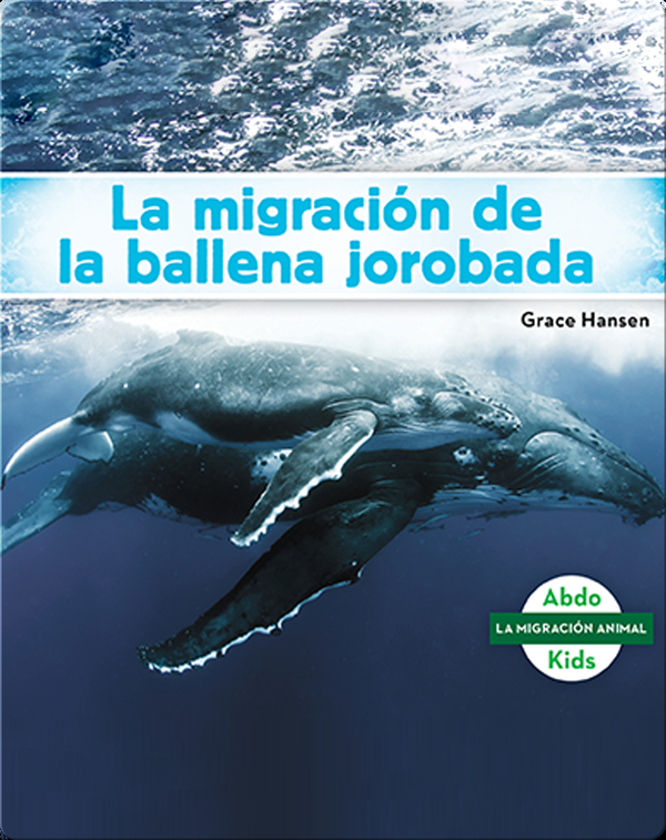 La migración de la ballena jorobada