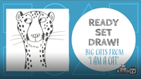 Ready Set Draw: I am a Cat