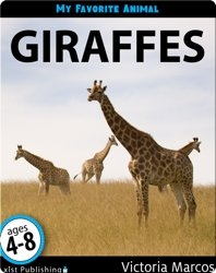 My Favorite Animal: Giraffes