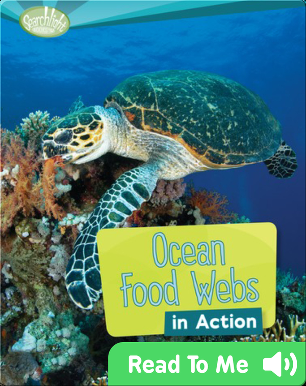 Ocean Food Webs in Action