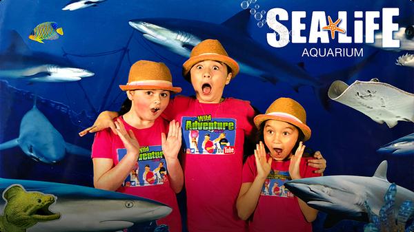 Kids Animal Adventure - Behind the Scenes at the Sea Life Aquarium!