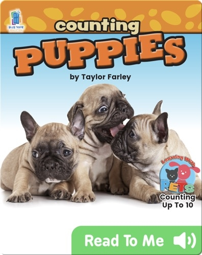 Counting Puppies