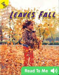 Leaves Fall