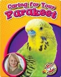 Caring for Your Parakeet: Pet Care Library