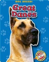 Great Danes: Dog Breeds