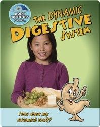 The Dynamic Digestive System