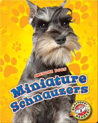 Awesome Dogs: Miniature Schnauzers