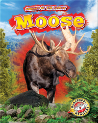 Animals of the Forest: Moose