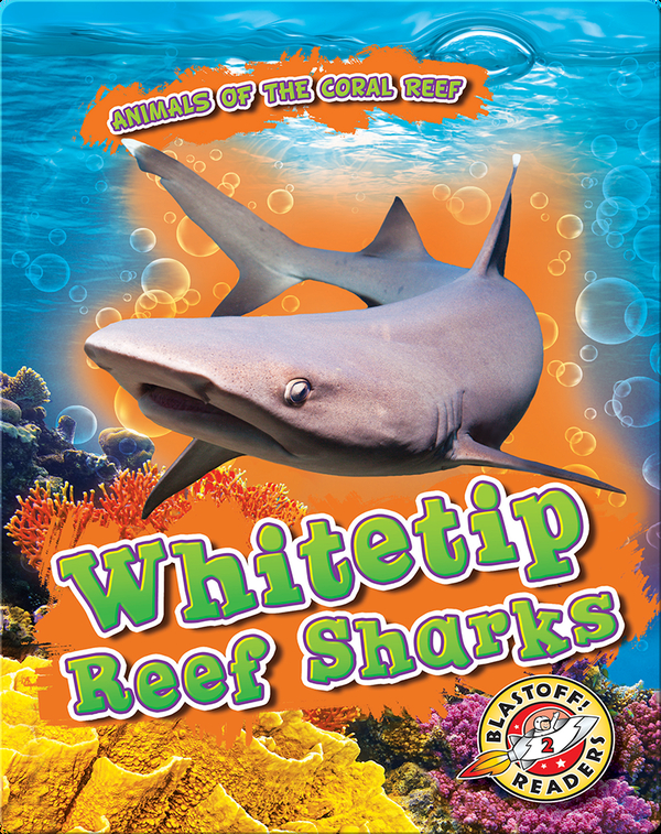 Animals of the Coral Reefs: Whitetip Reef Sharks