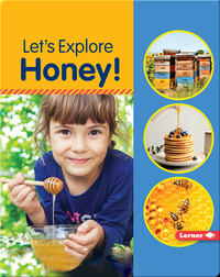 Let's Explore Honey!