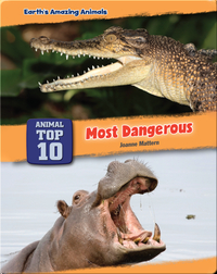 Top Ten Most Dangerous Animals