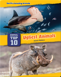 Top Ten Ugliest Animals