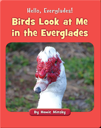 Hello, Everglades!: Birds Look at Me in the Everglades
